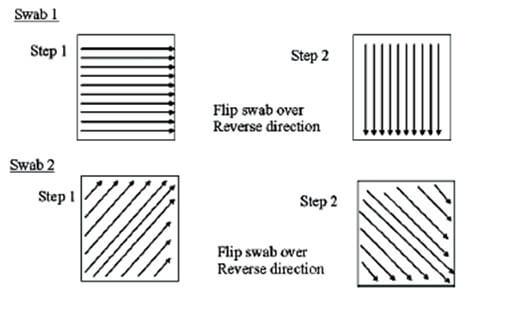 swabdiagram